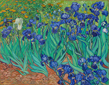 Vincent van Gogh, Irises, May 1889. Oil on canvas. J. Paul Getty Museum, Los Angeles